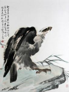 国画鹰图片