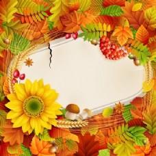 美丽的秋天图片