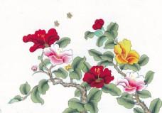 国画红花与叶图片