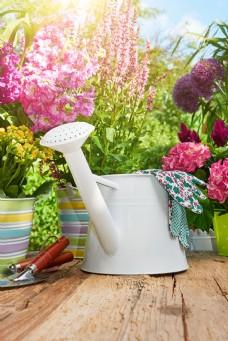 喷壶与花盆图片