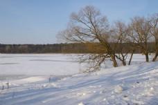 雪地美景摄影图片