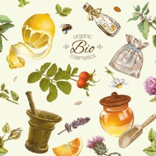 柠檬 蜜蜂 花卉 草药