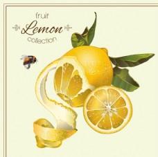 柠檬 蜜蜂