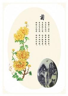 菊花题材装饰画