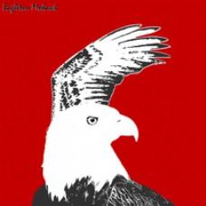 专辑20:Eagle