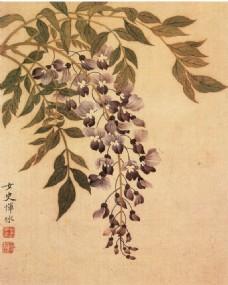 水墨花卉植物图片