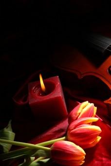 蜡烛与郁金香图片