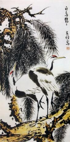 千顶鹤与植物图片