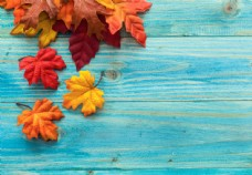 木板与枫叶图片