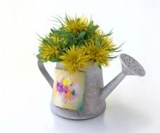 种植在喷壶里的鲜花图片