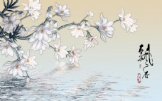 水面花卉背景墙