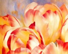 花瓣特写装饰背景墙