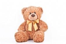 泰迪熊摄影图片