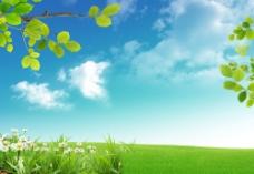 草原上的花草树木图片