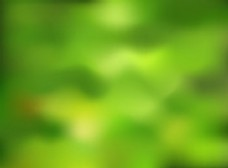 绿色自然背景