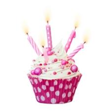 插蜡烛的生日蛋糕图片