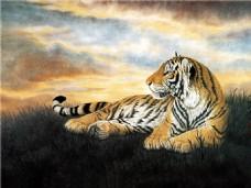 老虎装饰画