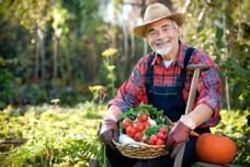 端着新鲜蔬菜的农民图片