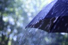 雨中撑起的伞图片