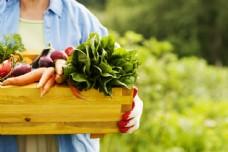 端在盒子的新鲜蔬菜图片