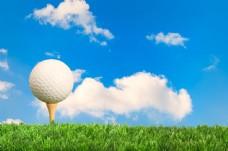 草地上的高尔夫球写真图片
