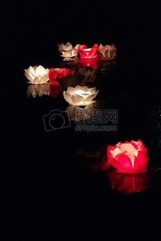 黑暗中的莲花灯