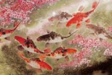 池塘里的金鱼图片
