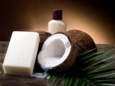 椰子与肥皂图片