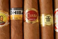 雪茄40图片