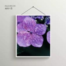 花朵露珠无框装饰画
