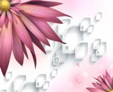 花瓣装饰抽象背景墙