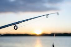 水库伸出的鱼杆图片