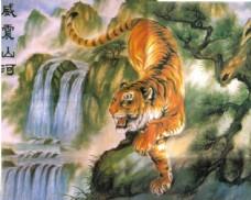 油画老虎图片