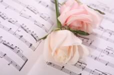 乐谱与玫瑰花图片