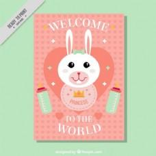 尼斯兔宝宝淋浴卡
