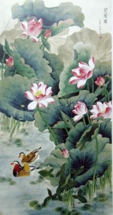 国画莲花图片
