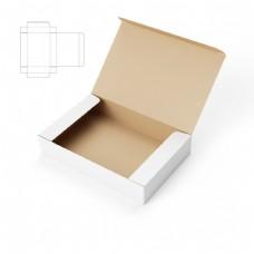 鞋盒包装效果图图片