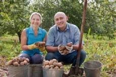 拿着土豆的农民图片