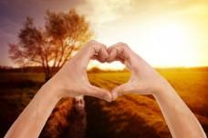 田野里的爱心手势图片