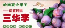 三华李-网页