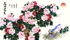 牡丹花卉素材背景装饰