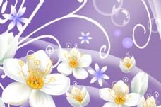 白色花瓣装饰墙