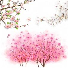 桃花 树木