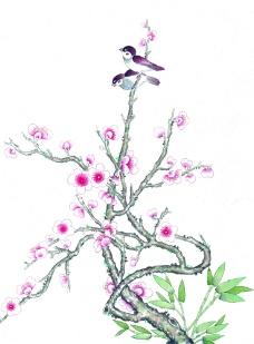 梅花上的小鸟图片