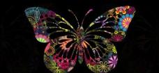 蝴蝶标本素材高清PSD