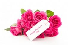 母亲节礼物美丽的玫瑰花图片