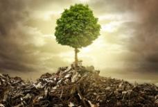 垃圾与树木图片