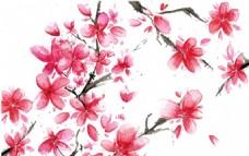 手绘水彩樱花背景