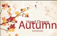 枫叶 秋天 autumn 海报
