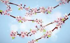 朦胧的樱花海报背景